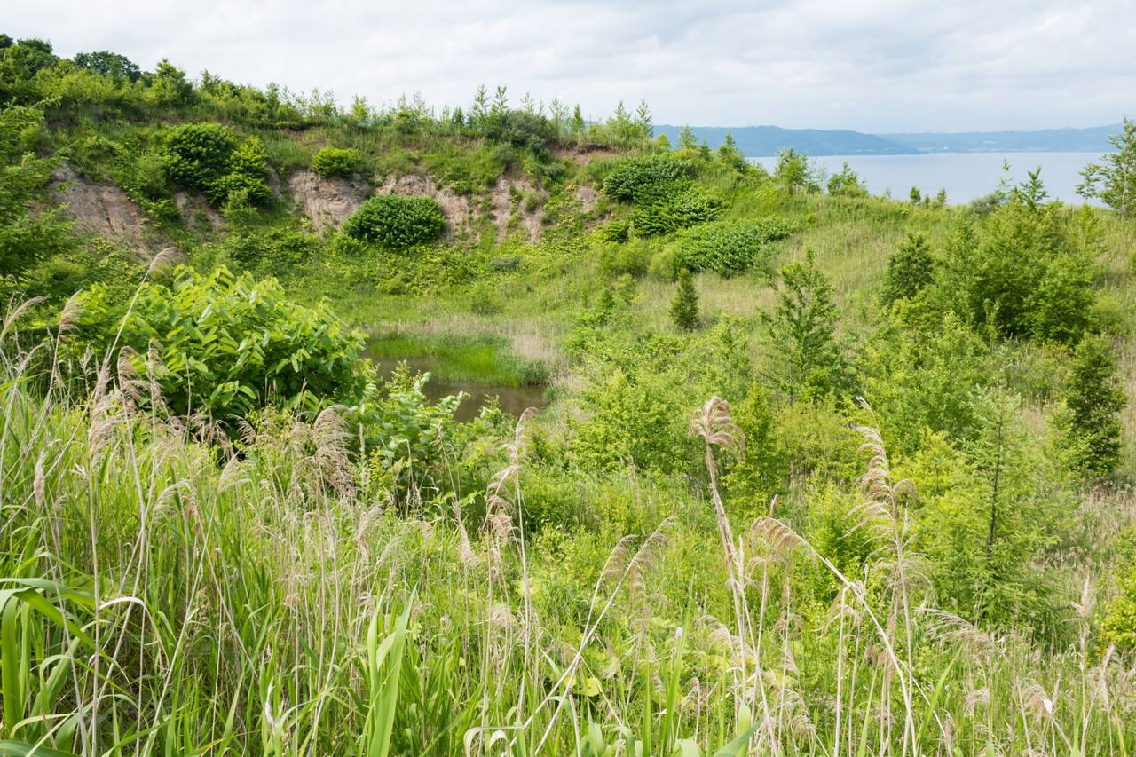 洞爺湖有珠山ジオパーク1金比羅火口災害遺構散策路