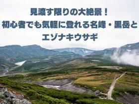 見渡す限りの大絶景!初心者でも気軽に登れる名峰・黒岳とエゾナキウサギ