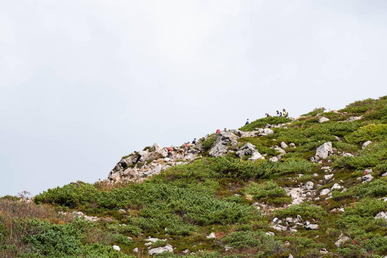 ニセコイワオヌプリ登山道