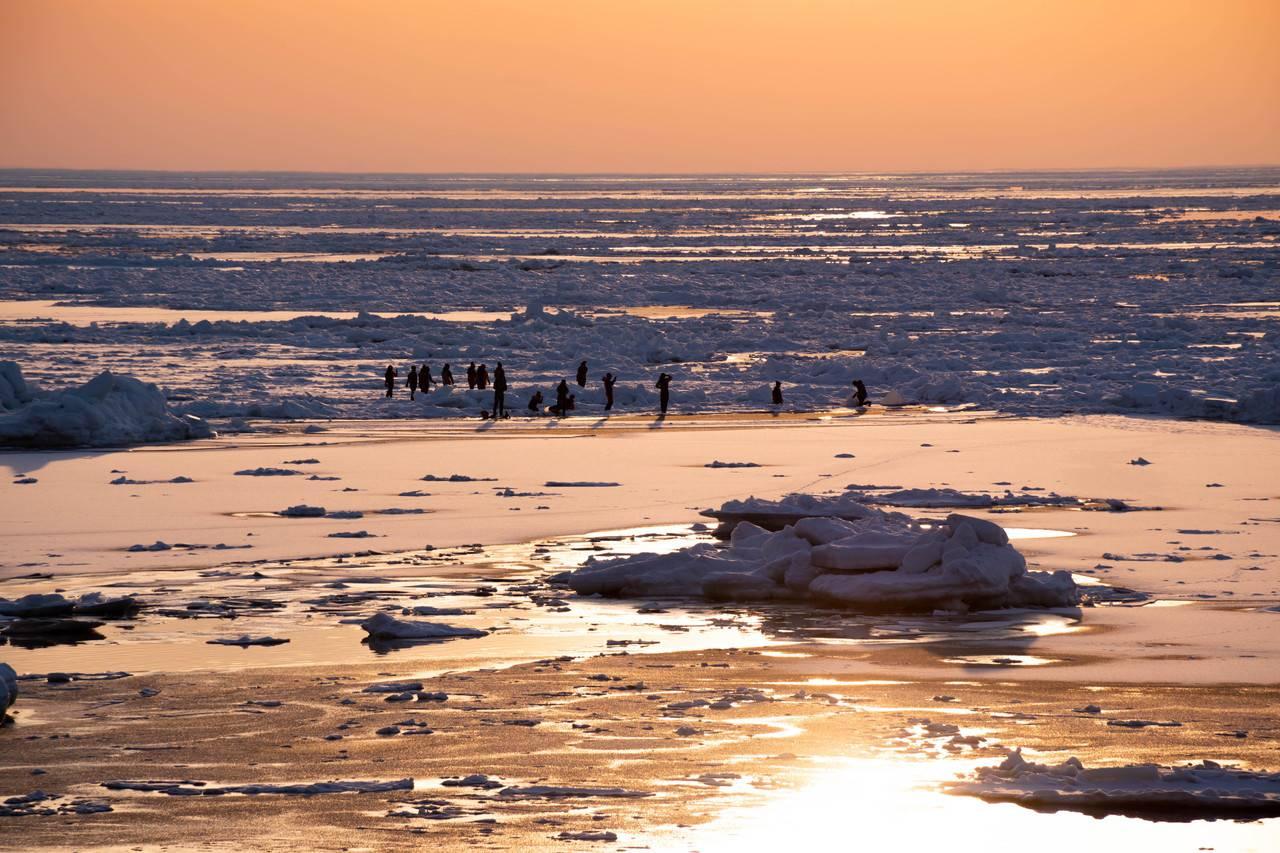 ウトロの流氷ウォーク
