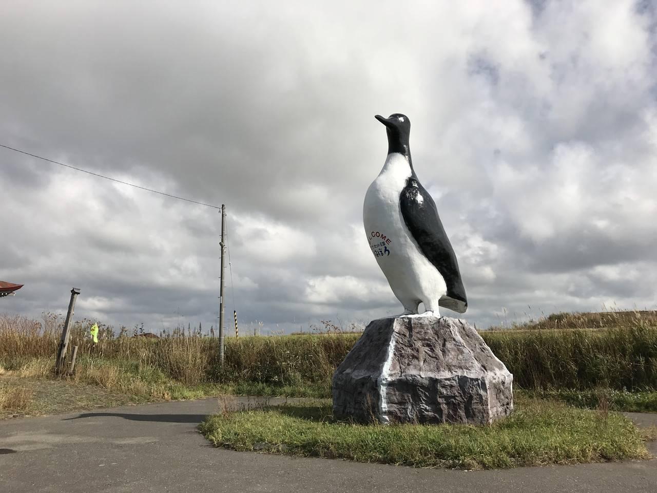 羽幌町のオロロン鳥