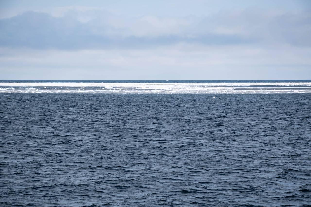 砕氷船おーろら 流氷帯