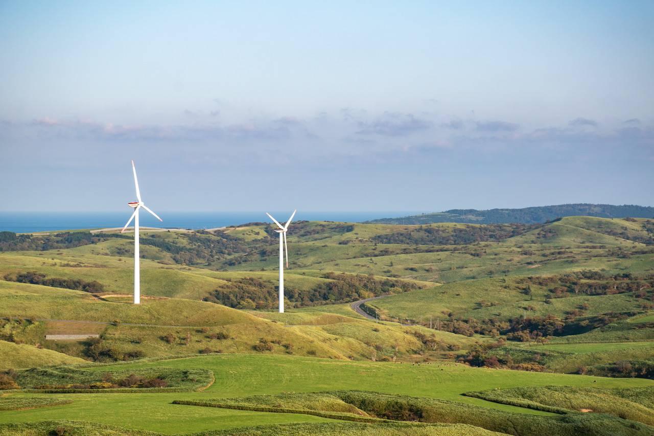 宗谷岬ウインドファームの風車群
