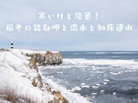寒いけど絶景!厳冬の能取岬と流氷と知床連山