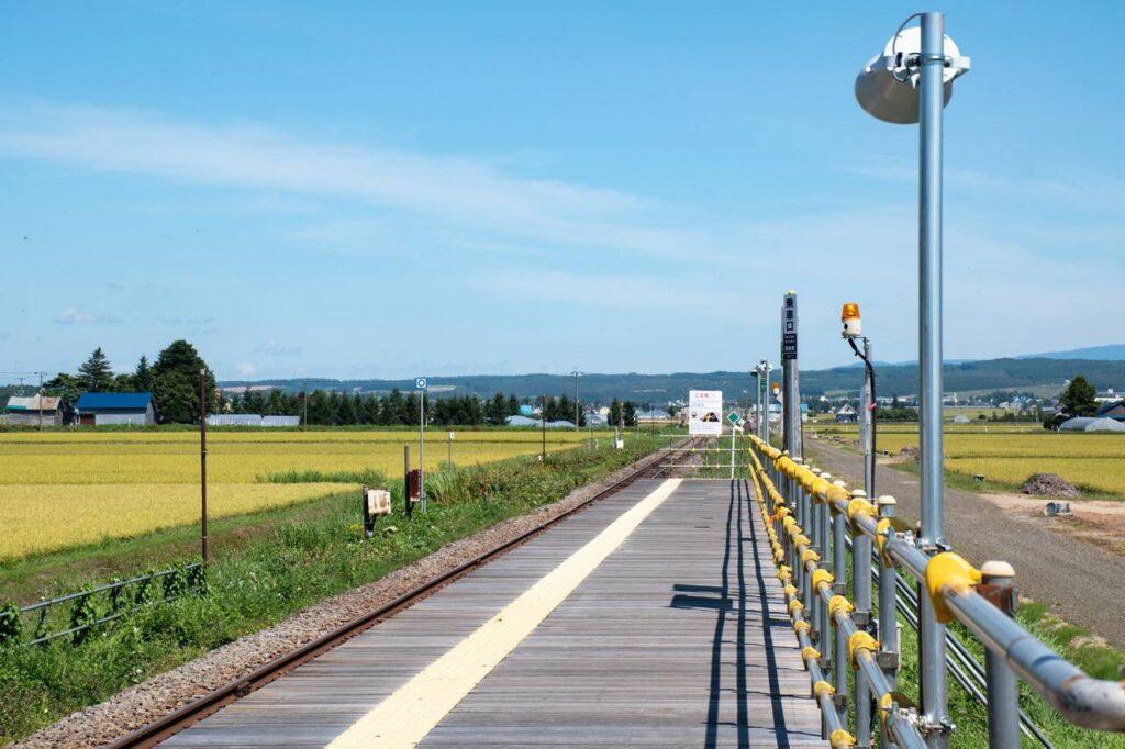 ラベンダー畑駅